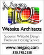 MegaIQ Website Architects